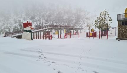 صور وفيديو - تساقط الثلوج وتراكمها في جبل الشيخ
